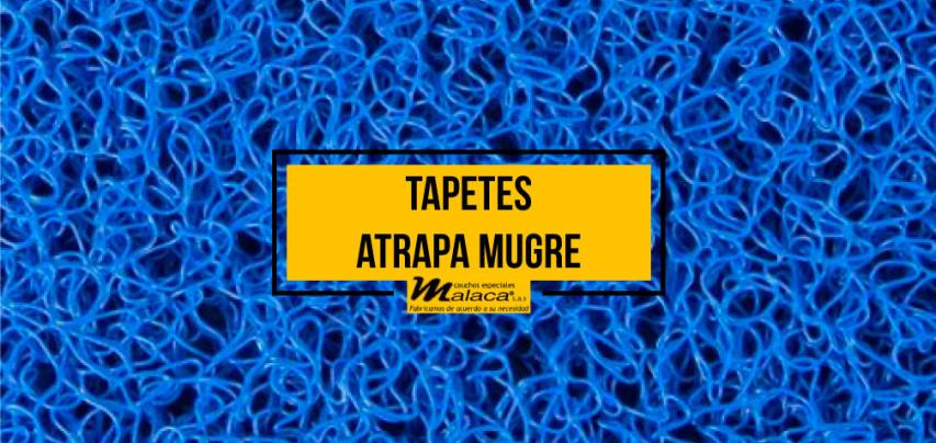 Tapetes atrapa mugre: conoce sus principales características